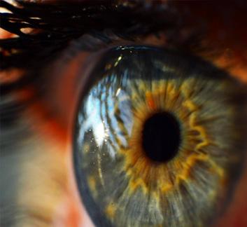 Photo de la cornée d'un oeil