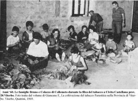 famiglie-collemeto-filzano-il-tabacco-a-civita-c-anni-60