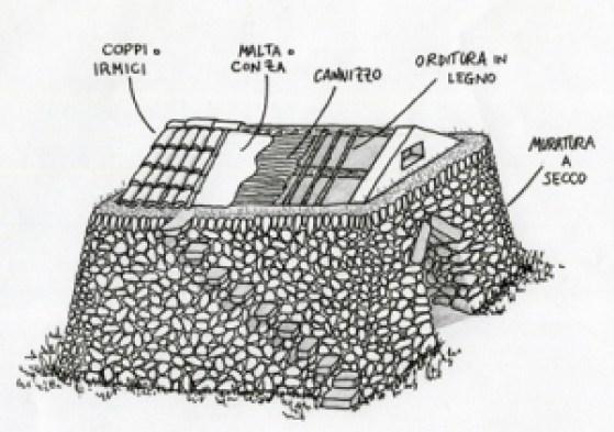 caseddhra