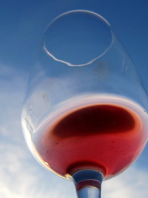 vino e foglie 020