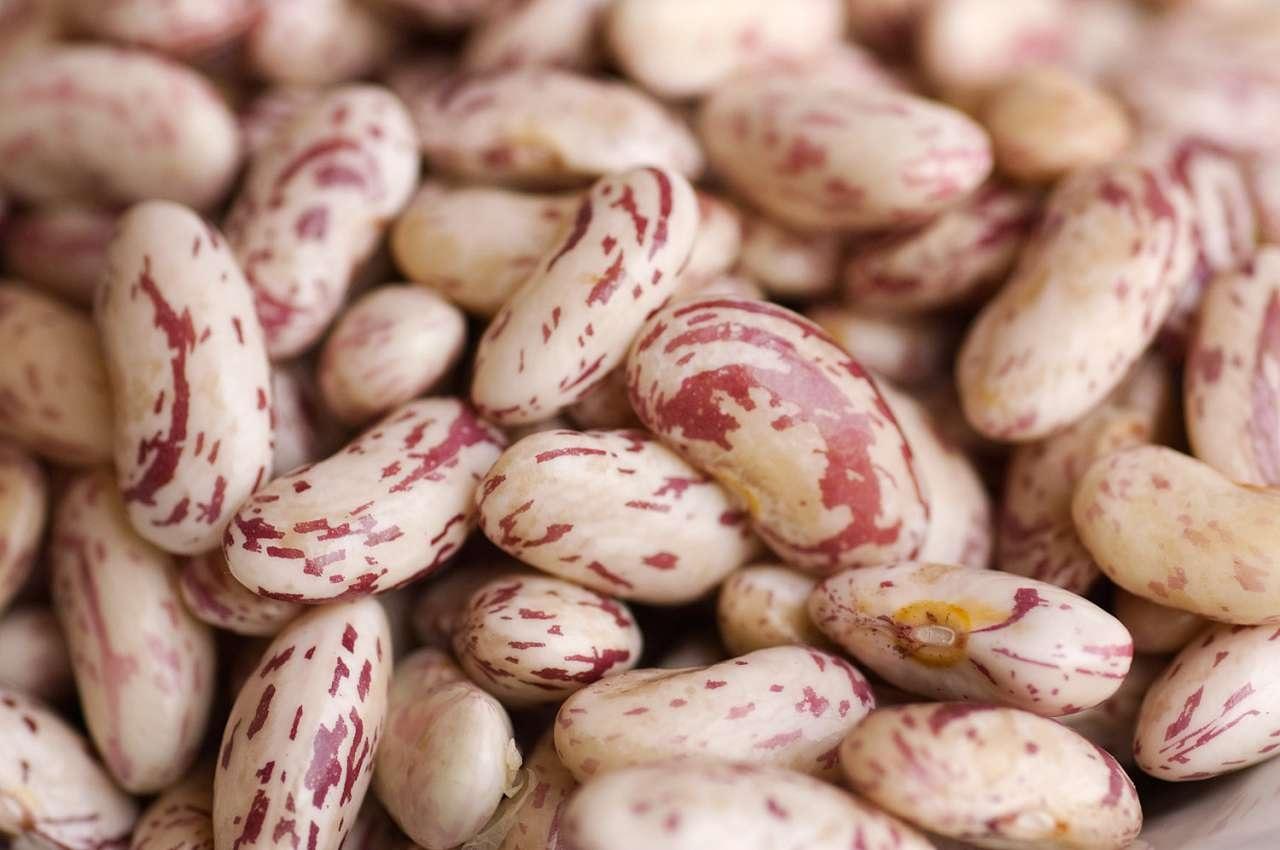 Lu pasulu (il fagiolo): non solo un legume