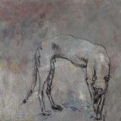 Galgo, 50x65 cm, acrylique, pastel et fusain sur toile, Lucie Geffré 2017