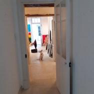 Labégorre-à-St-Rémy-de-Provence,-arrivée-des-toiles,-12-mars-2020-#04