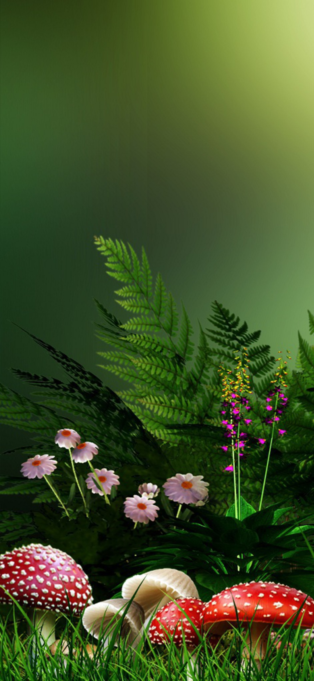 Flower Hd Phone Wallpaper 029