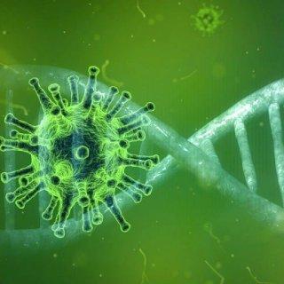 coronavirus-4833754_1280