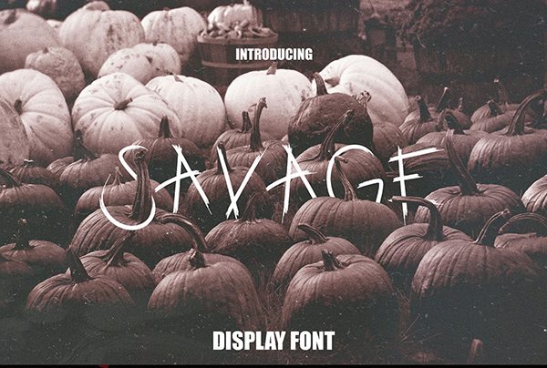 Savage Display Font