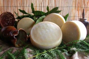 caprino lucano formaggio di capra formaggio latte di capra azienda agricola caggiano basilicata lucania