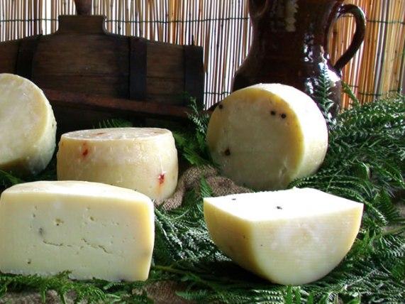 formaggio di mucca al tartufo formaggio di mucca formaggio latte di mucca azienda agricola caggiano basilicata lucania