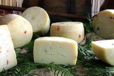 formaggio di mucca pepe e salvia formaggio di mucca formaggio latte di mucca azienda agricola caggiano basilicata lucania