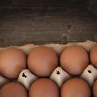 Amazing Egg Nutrition Facts You Did Not Know