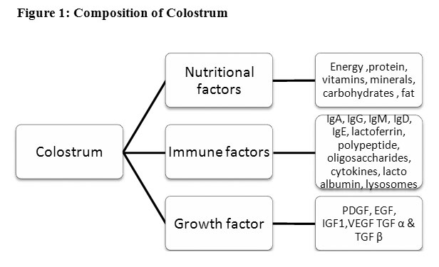 Image result for colostrum humans