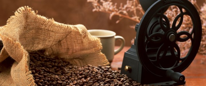 12 Things You Didn't Know about Coffee
