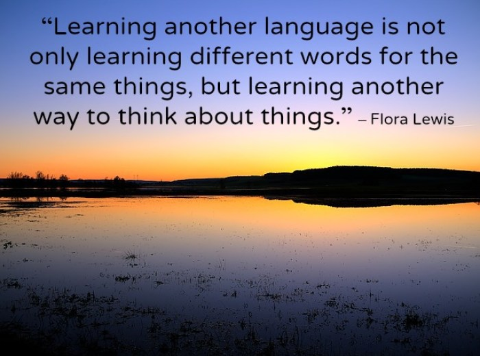learning-language