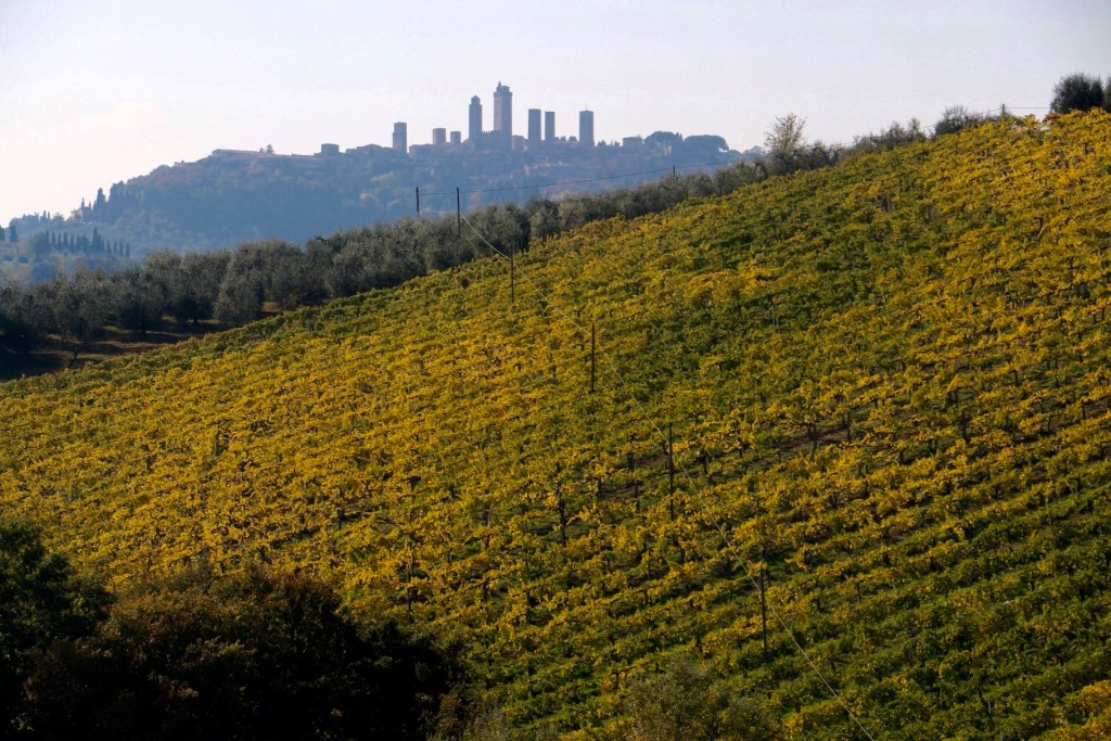 A perfect day in San Gimignano