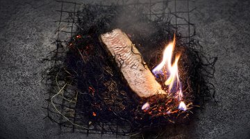 Book review: Food from the fire by Niklas Ekstedt