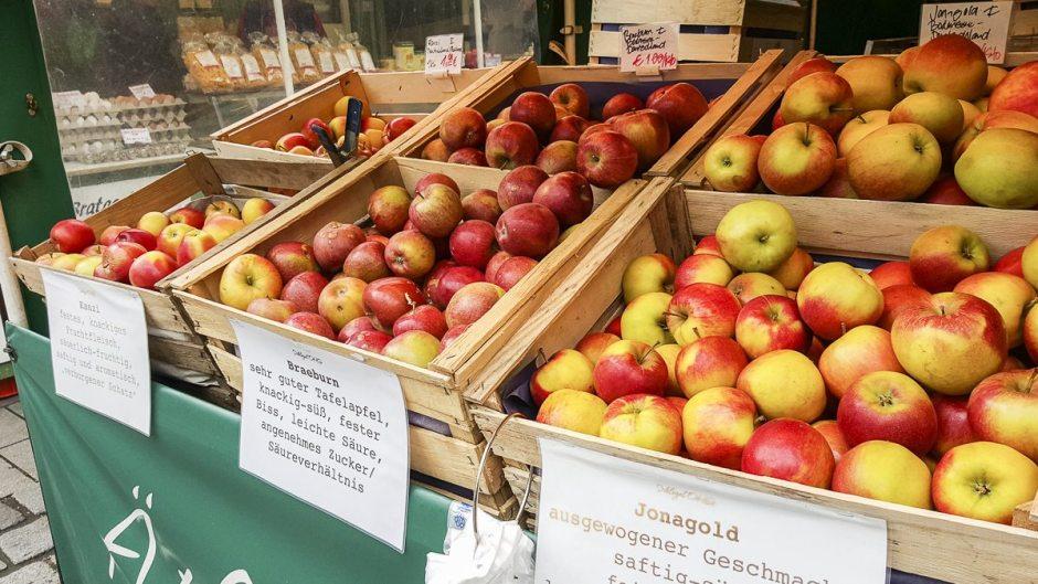 Viktualienmarkt  apples