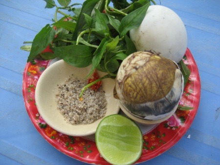 Image result for Balut cambodia