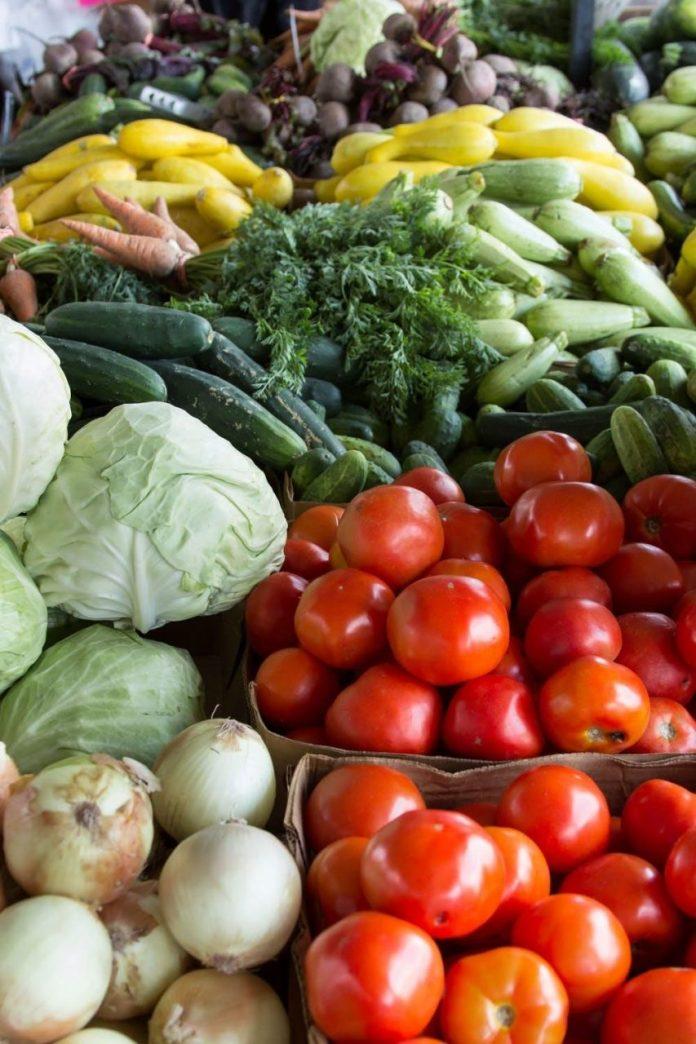 Large Family Cabbage Lasagna Freezer Meal Recipe