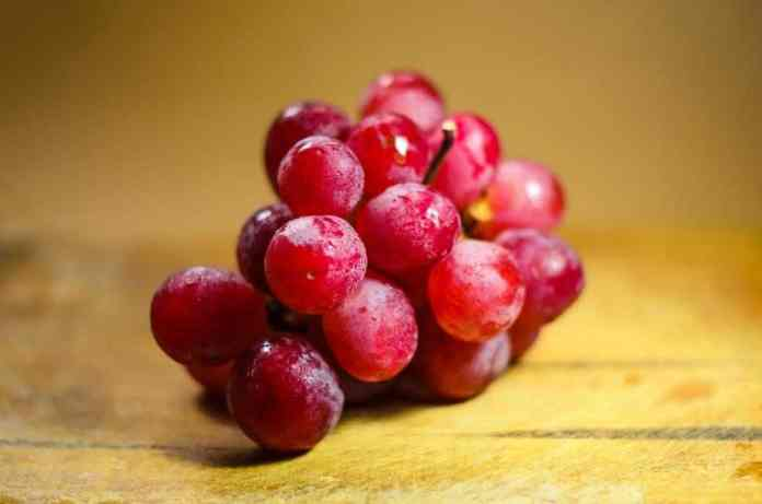 foods from the vine