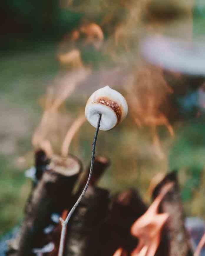 Celebrating a summer classic: smores!