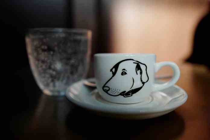 Dairy-Free Puppuccino for Dogs
