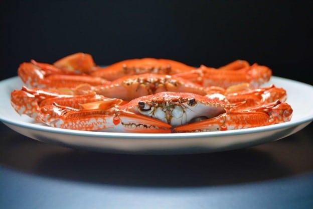 Seafood Recipes for the Fall Season
