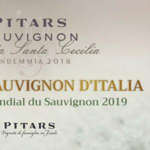 pitars_premio sauvignon 2019