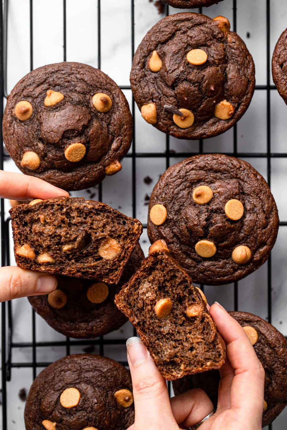 a hand holding healthy chocolate peanut butter muffins that are ripped in half