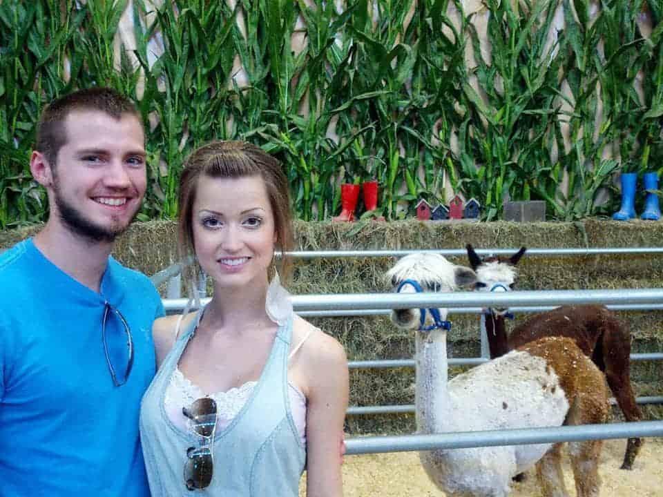 I just like the llama.