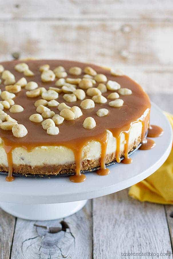 White Chocolate Macadamia Nut Cheesecake