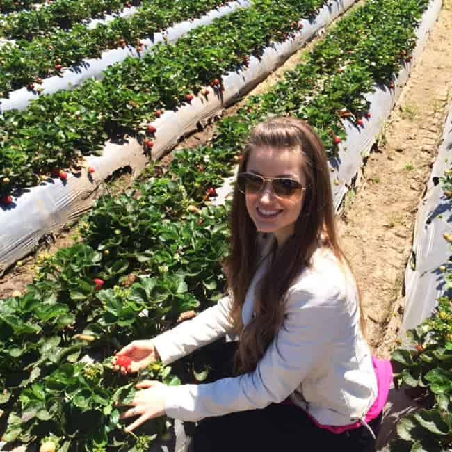 "California Strawberries ""Get Real in Ca"" Recap   Foodfaithfitness.com   @FoodFaithFit"