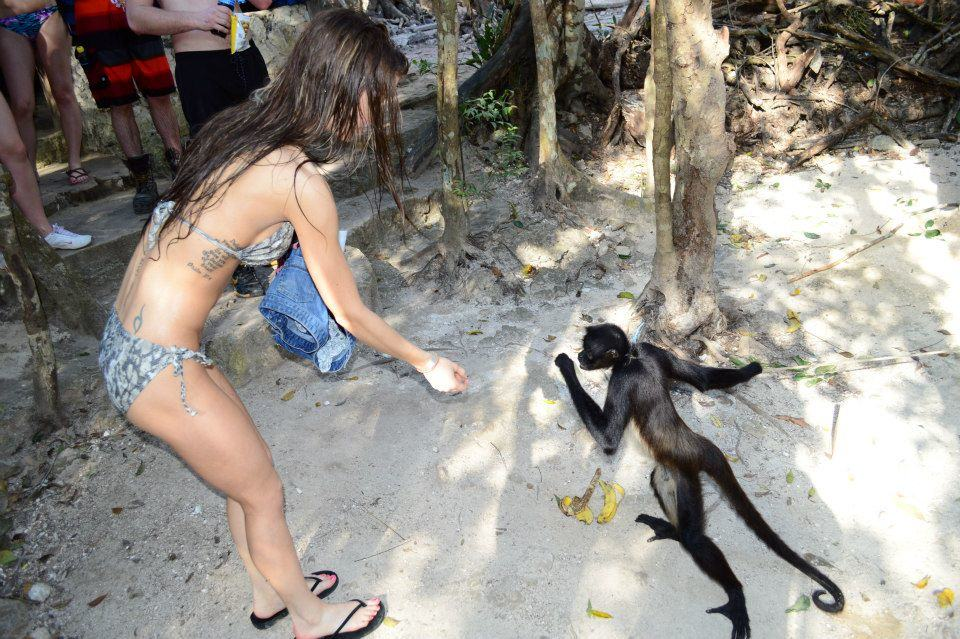 That time a monkey became my new BFF