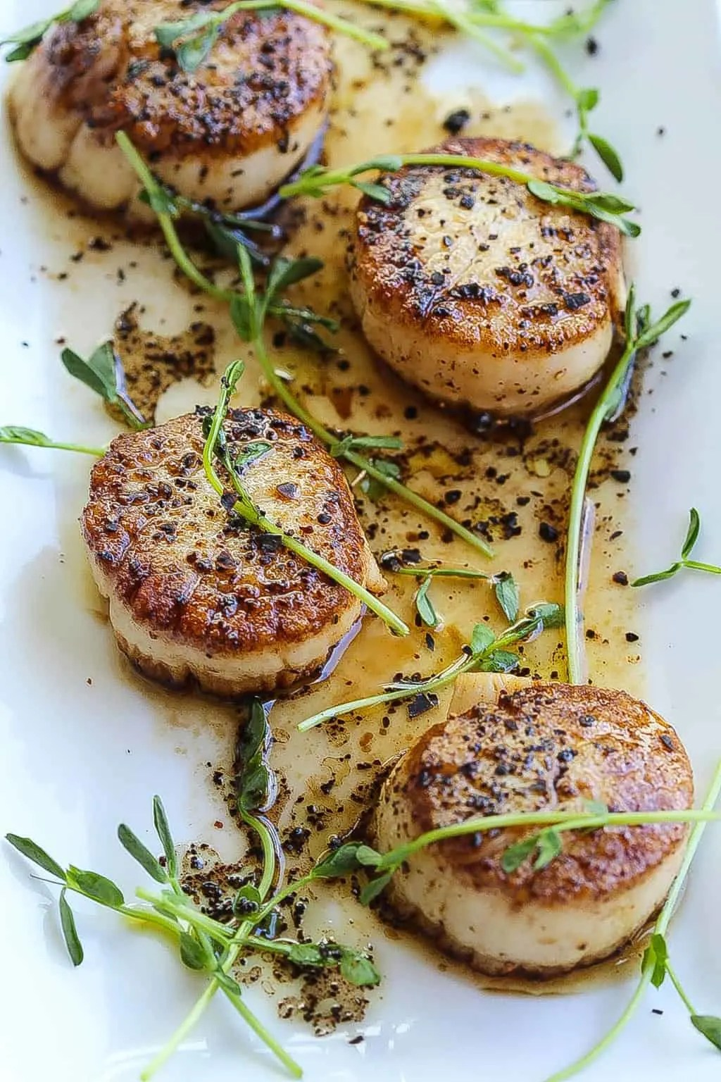 pan-seared scallops recipe plated with herbs and coffee vinaigrette