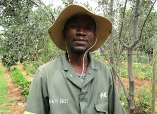Thabang Makoloi is a 36-year-old farm manger at Siyakhana Food Garden. He says the agriculture sector has given him purpose and passion.