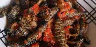 Kamogelo Maleka's Mopane Worms