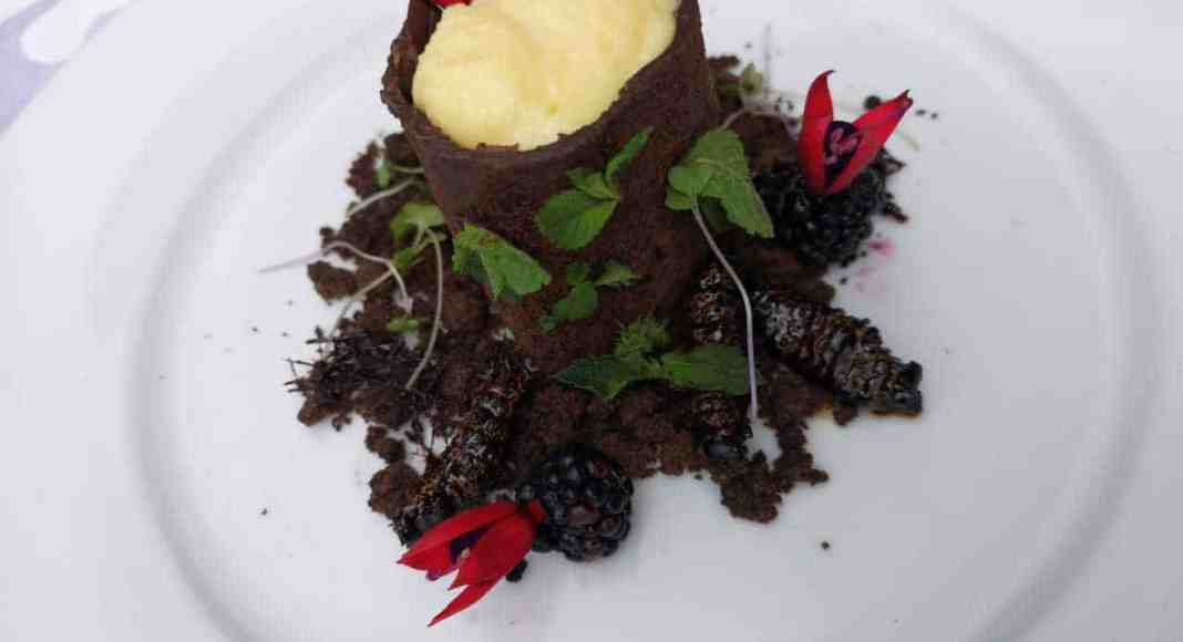 Chef Unaty Daniel's Mopane Worm Chocolate Tree and Ginger Crumble Soil recipe