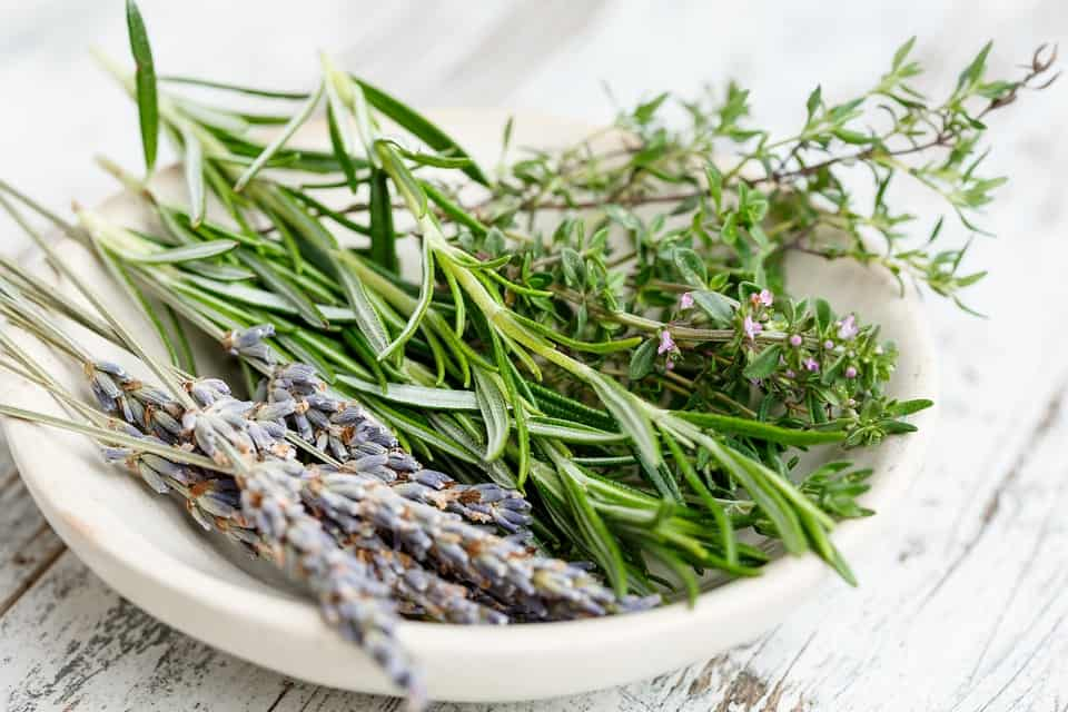 Herbs are jam-packed full of nutrients and come with a host of health benefits. When you start using herbs associate with something that interests you.
