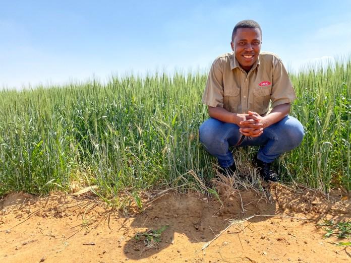 Buchule Jack left the corporate world to pursue his farming dream.