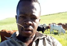 32-year-old Mzwandile Duma attributes his passion for farming to his father Lawrence Duma.
