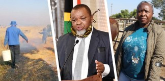 (From left): Minister of Mineral Resources and Energy Gwede Mantashe and MEC - Department of Agriculture & Rural Development - North West Provincial Government. Pictures: Supplied