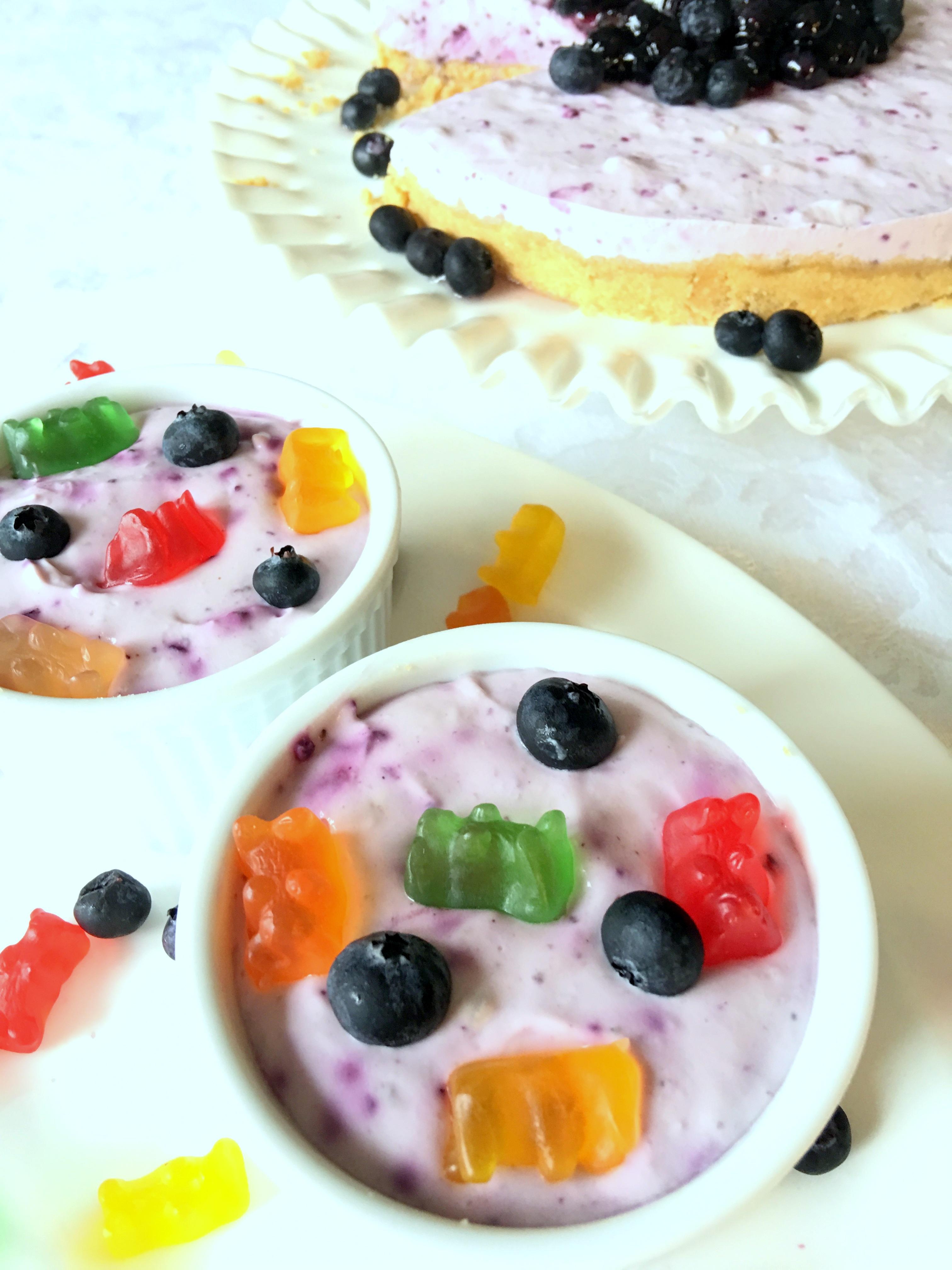 2016-10-03-12.40.56 Children Love Frozen Blueberry Yogurt Dessert
