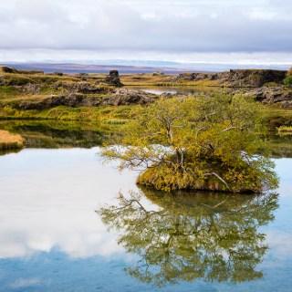 Day 13/22 Iceland: Grjótagjá, Dimmuborgir, Lake Mývatn, Pseudo Craters, Goðafoss, Jólagarðurinn, Akureyri