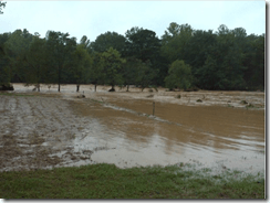 love-is-love-farm-flood