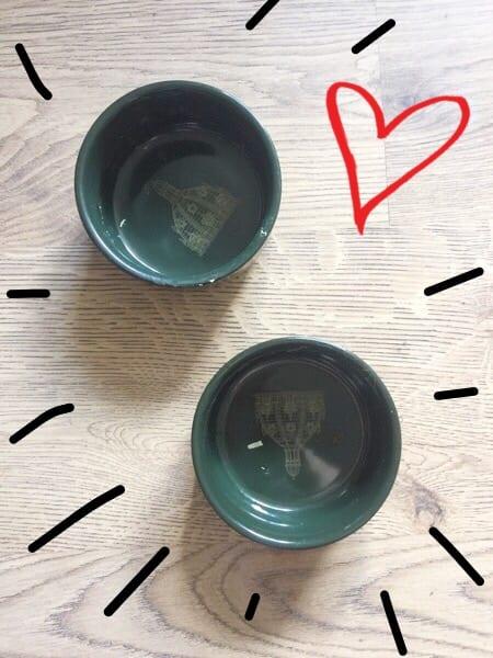 Gourmet cat soup review - empty bowls!