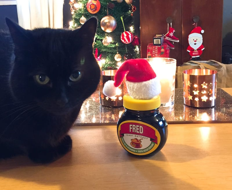fred marmite christmas name