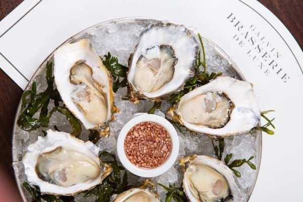 Galvub brasserie de luxe Oysters