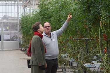 Scotty brand tomatoes Hawick farm princess royal Anne