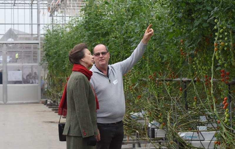 Royal visit for Hawick grown tomatoes