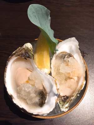 Gin and tonic oyster bistro Deluxe by Paul Tamburrini