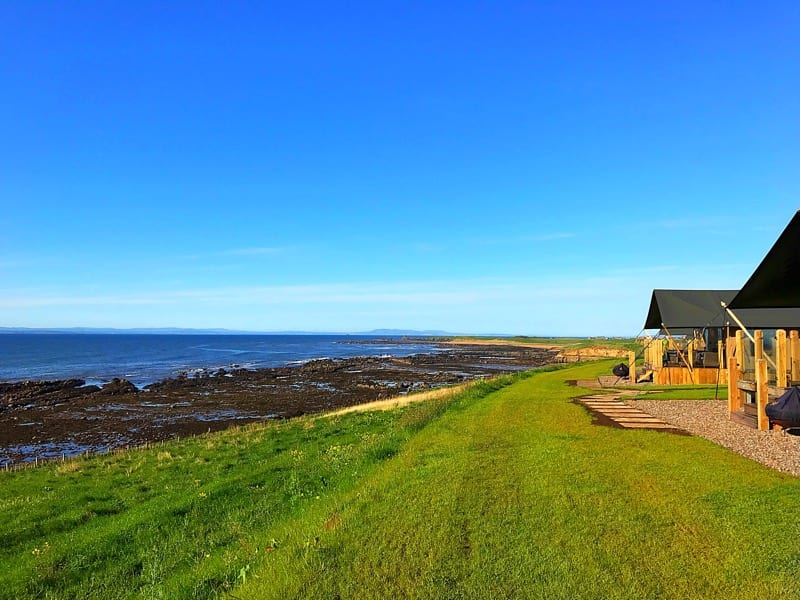 catchpenny Safari Lodges Fife foodie trip